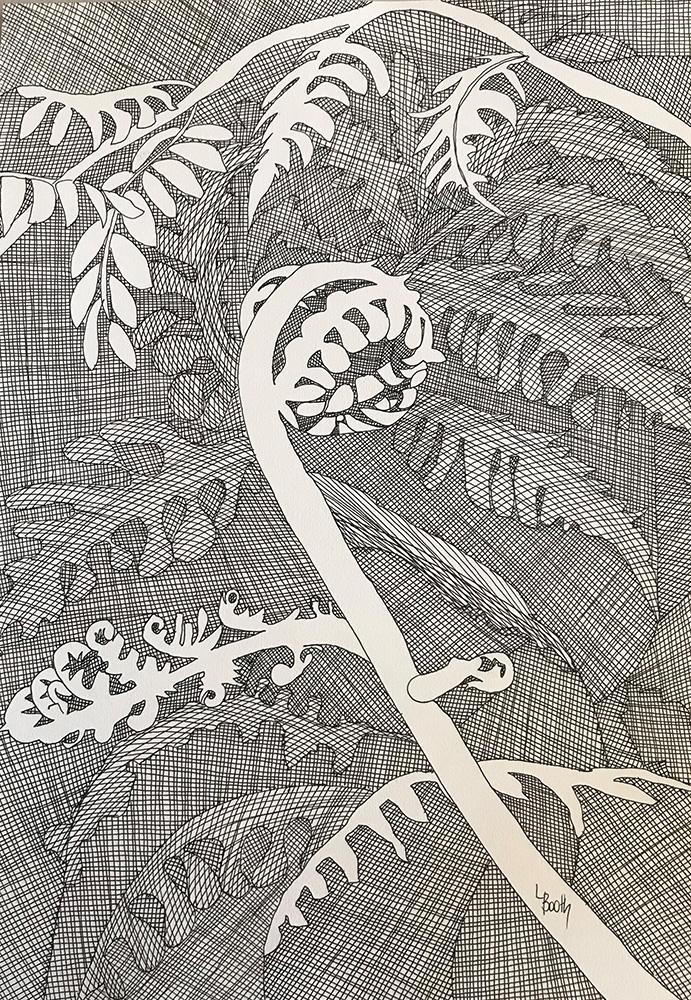 Leanne Booth: <em>Unfurling</em>, ink on Aquarelle Cold Pressed Paper.