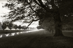 Tracy Ponich. Mist, Retford Park, photograph on handmade paper (Washi).