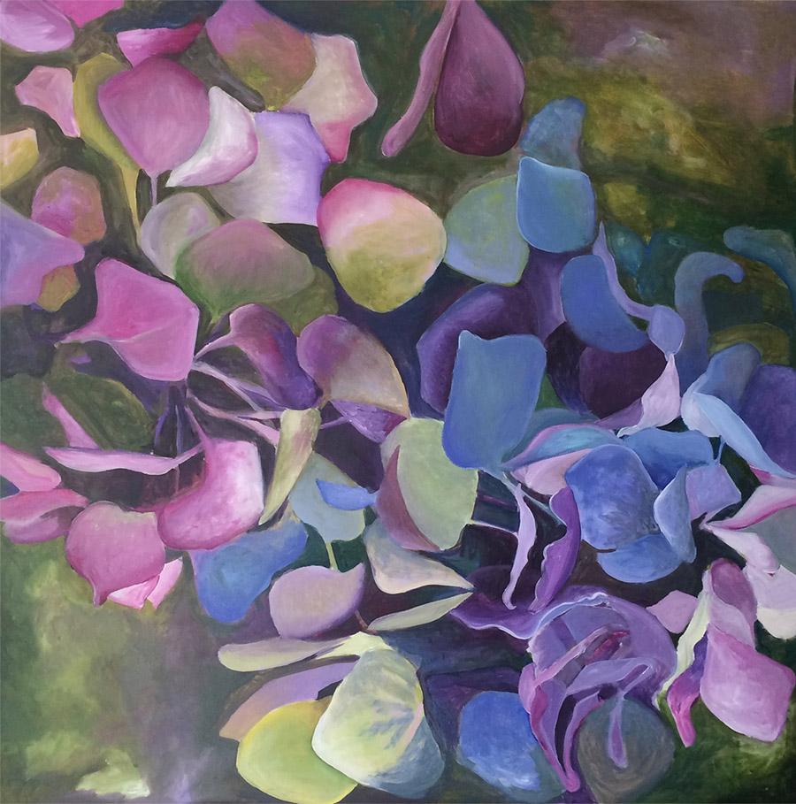 Tracey Miller. Hydrangea.