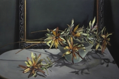Susan Heslin: Leucadendron, oil on linen, 2020