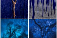 Mark Kelly: (clockwise) Blue Yonder, Blue Poles, Blue Moon, Blue Haze